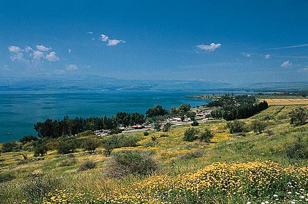 Location Vacances Israel Location Appartement Tel Aviv