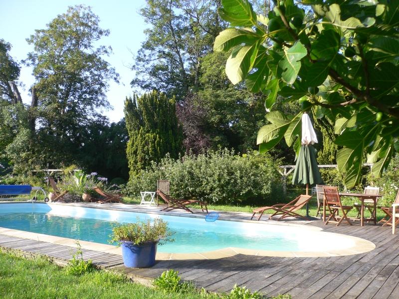 Auvergne clermont ferrand chambres d 39 hotes chambres d 39 hotes auvergne de charme avec piscine - Chambre d hote en auvergne avec piscine ...