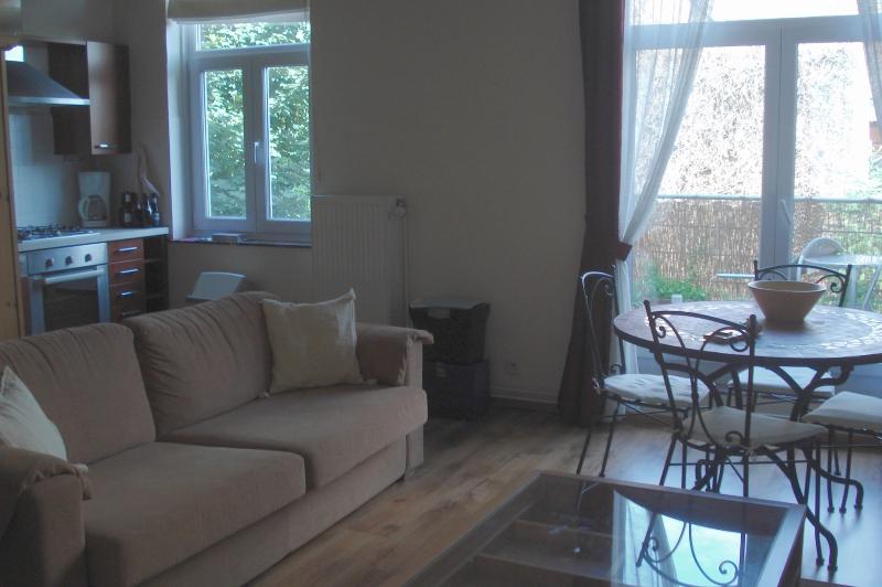 Location appartement meubl avec terrasse bruxelles proche du - Appartements meubles bruxelles ...