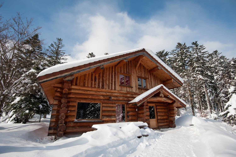 location vacances vosges chalet en rondin pourvant accueillir jusqu 39. Black Bedroom Furniture Sets. Home Design Ideas